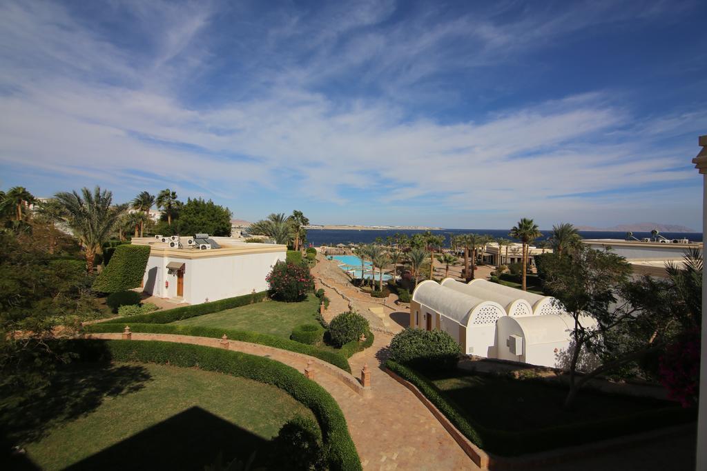 территория отеля Club Reef Hotel