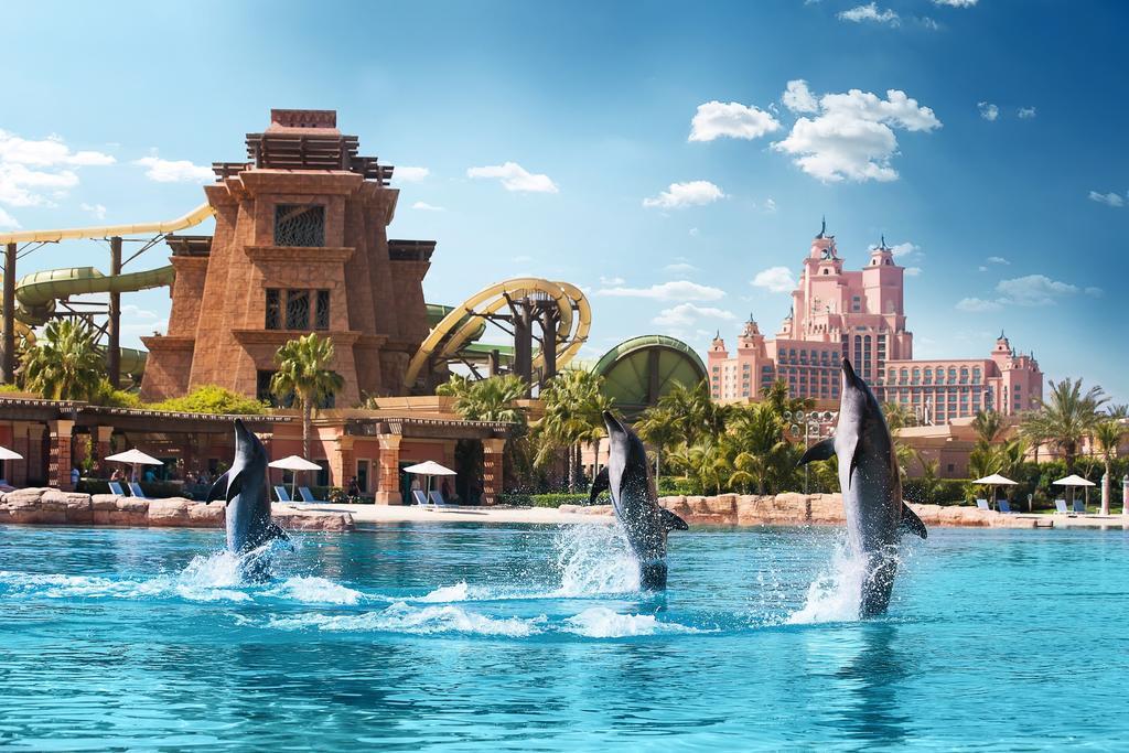 развлечения отеля Atlantis The Palm
