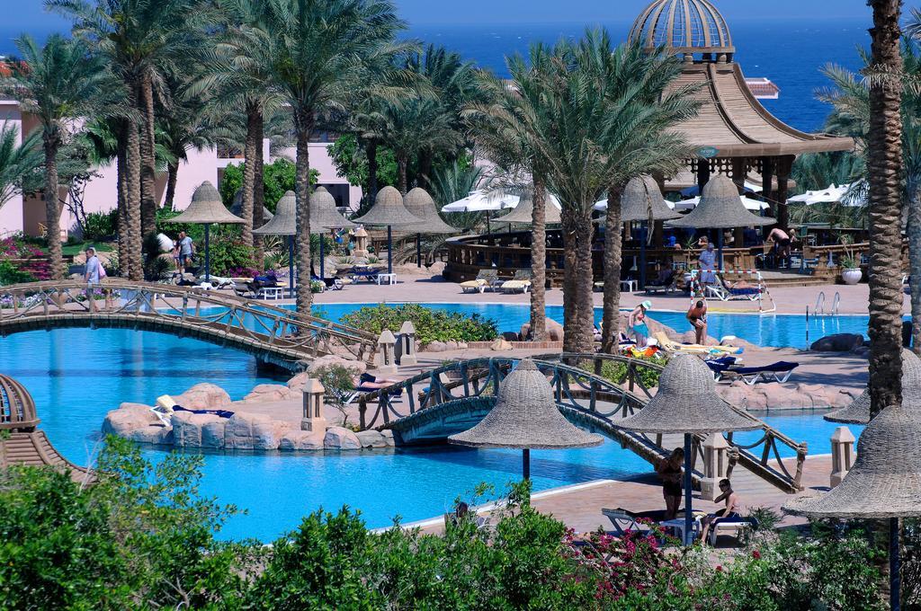 территория отеля Parrotel Beach Resort