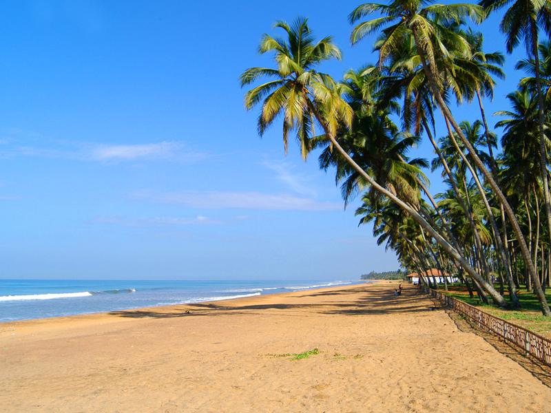 пляж отеля Royal Palms Beach Hotel