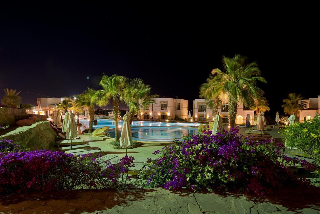 территория отеля Shores Aloha Resort