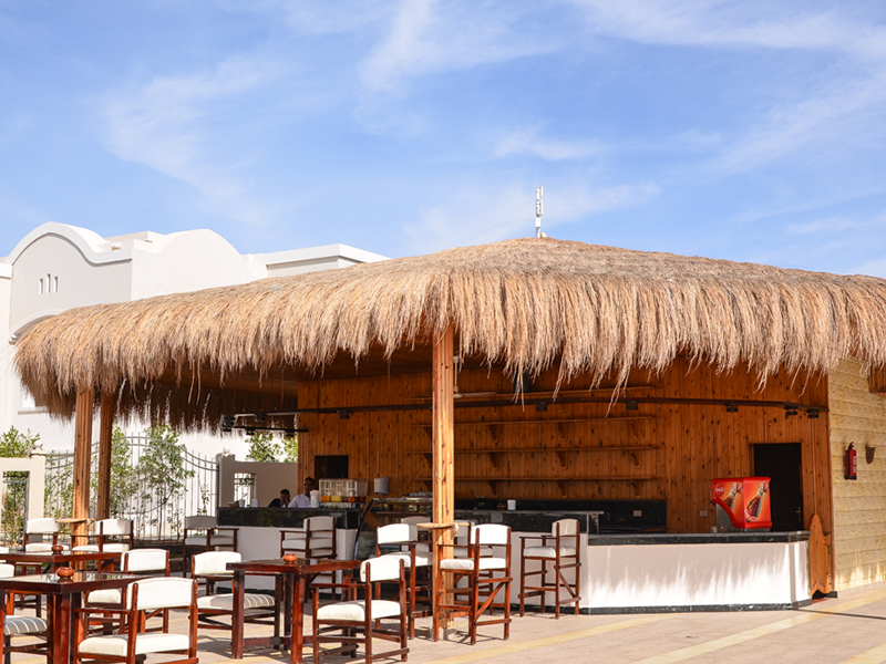 бар отеля Royal Albatros Moderna