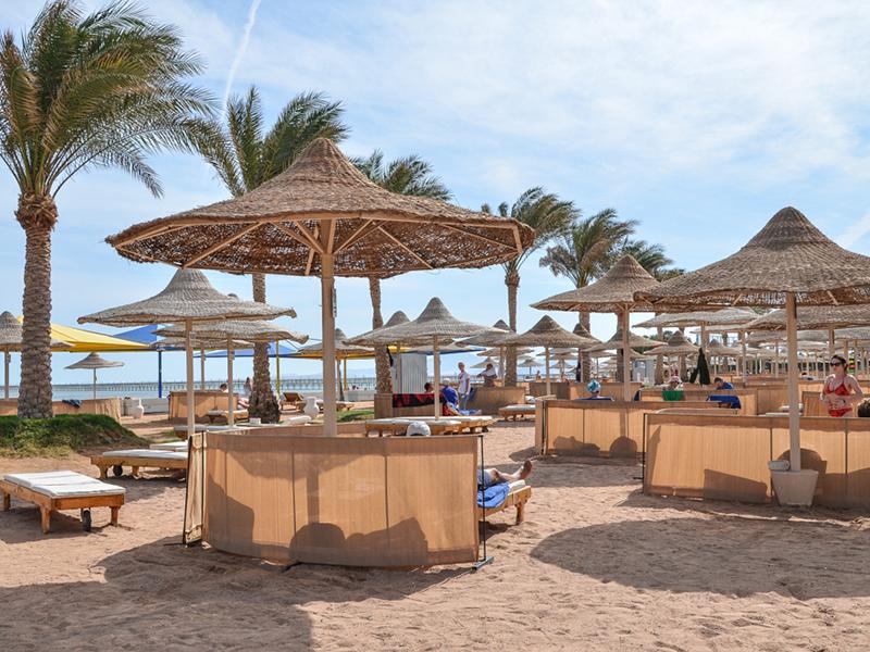 пляж отеля Royal Albatros Moderna