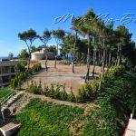 территория отеля Sani Beach