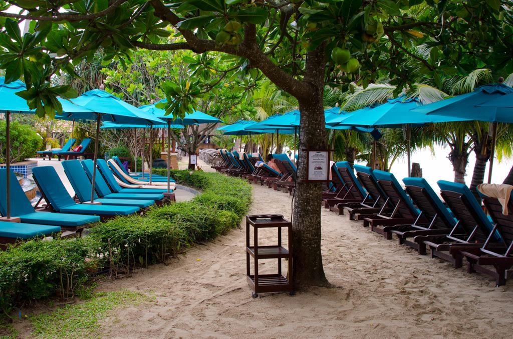 пляж отеля Koh Chang Paradise Resort