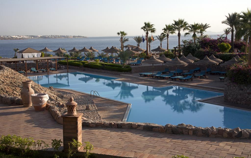 бассейн отеля Club Reef Hotel