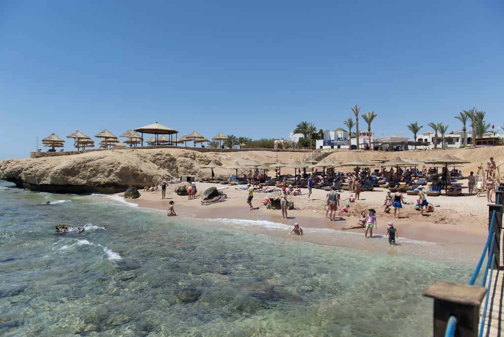 пляж отеля Otium Hotel Amphoras Sharm