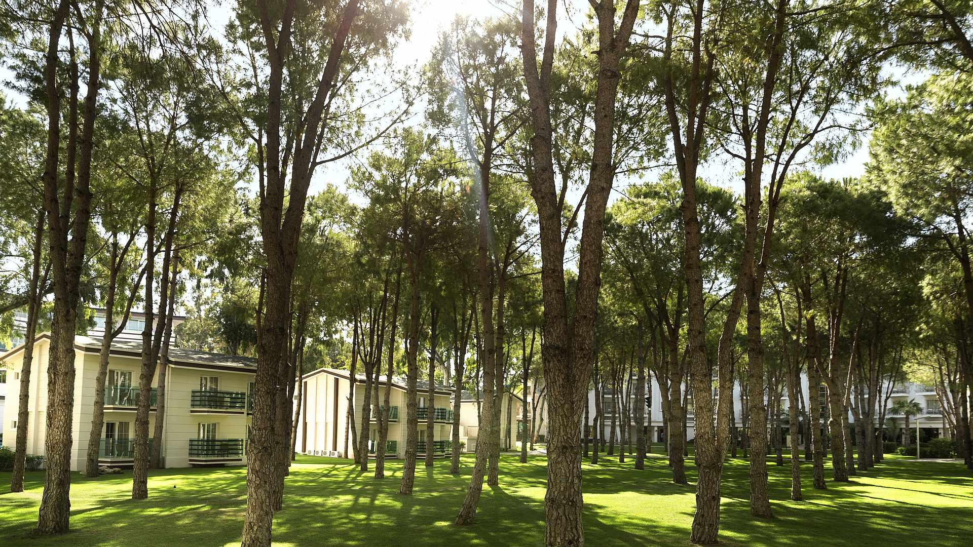 территория отеля TUI MAGIC LIFE Masmavi