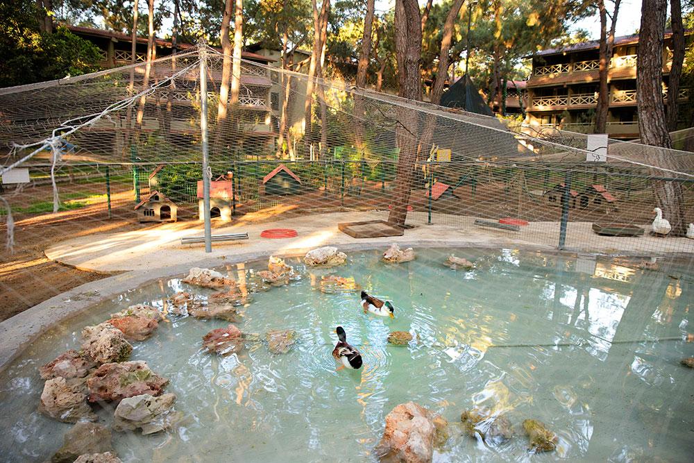 мини-зоопарк отеля Marti Myra