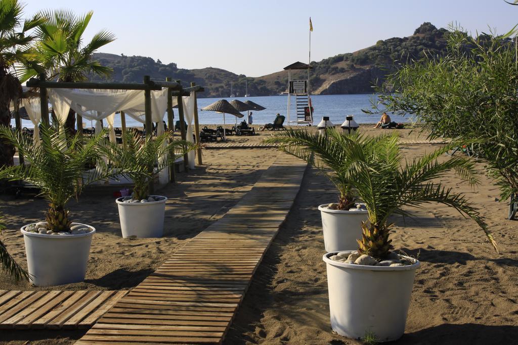 пляж отеля TUI Magic Life Sarigerme