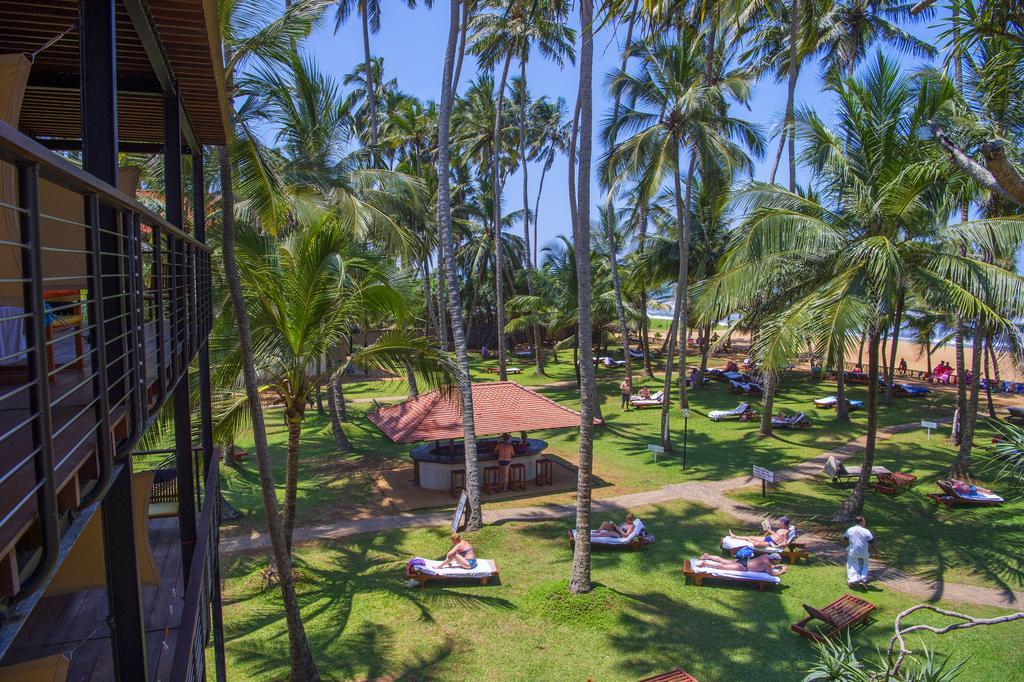 территория отеля Mermaid Hotel & Club